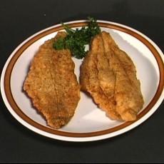 fishplate1